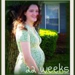 pregnancy update ~ 22 weeks