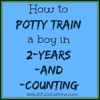 how to potty train a boy
