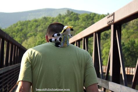 15 Chickfila cow piggy back ride