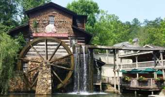 Dollywood (in pictures)