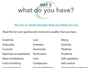 Mindset Reset Workbook-Day 5 What Do You Have?