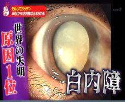 Beauty_2015_08_06_004250