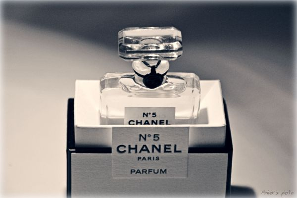 chanel-n-5-cover