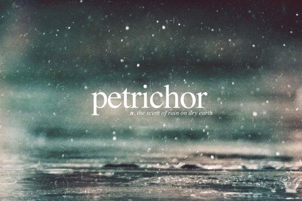 l'odore-della-pioggia-profumi