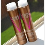 Currently Loving – Brazilian Blowout Volume Shampoo and Conditioner