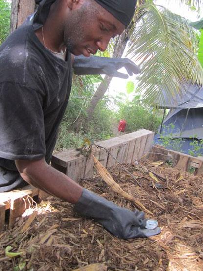 luchocomposting