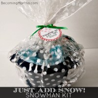 Just Add Snow - A Snowman Kit