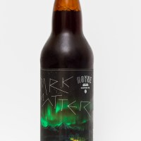 Hoyne Brewing Co. - Dark Matter