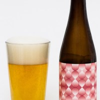 Four Winds Brewing Co. - Bloom Cherry Blossom Farmhouse Ale