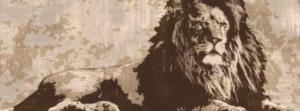 FRONT_LION