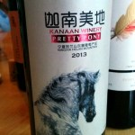 Kanaan 'Pretty Pony' from Ningxia ranks among the best China reds. At Pudao.