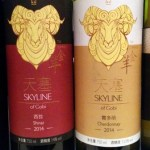 Xinjiang-based Skyline is part of a new wave of wineries focusing on quality, not quantity.