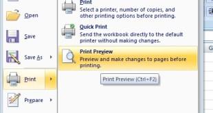 print preview pada microsoft excel 2007