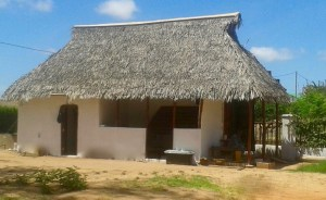 Service Building with staff toilet, laundry room, kitchen and storage