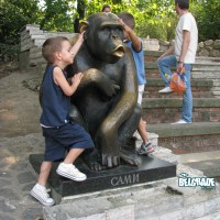 Sami, the legend of Belgrade zoo