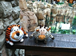 Giraffe and Tiger on Rail with rocks behind