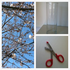 Collage Scissors Cherry Blossom Vase