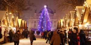 The authorities of Lviv install New Year Tree on the square in front of the Opera Theatre