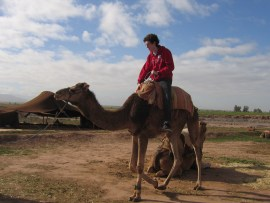 Camel Bucket List
