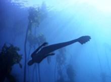 Mermaids-Animal-Planet-2