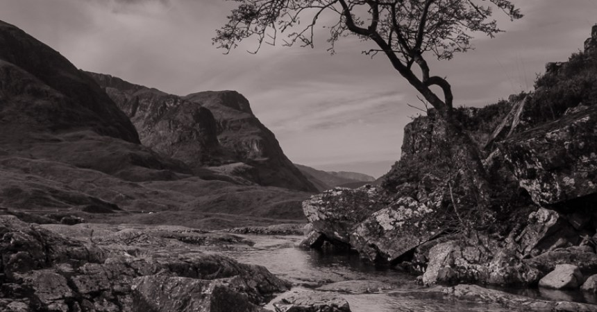 A black and white sepia image of a tree overhanging the river Coe with the Three Sisters of Glencoe and the glen of Glencoe stretching out in the background.