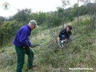 Pflegearbeiten im Naturschutzgebiet Spitzerberg in der Praxis   Foto: Berg-und-Naturwacht.org