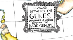 Charting a course through the dark genome