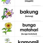 Flashcards Gratis: Bunga