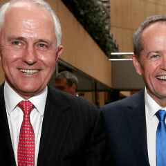 Iffiayah Wazza-Lefte: It's time to trust Shorten and Turnbull on marriage