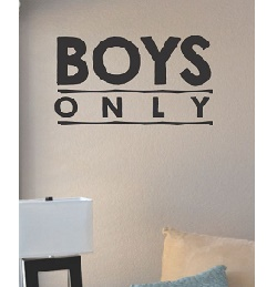 vinyl lettering ideas for walls