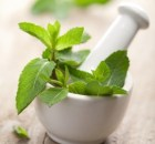 peppermint_medicinal_properties