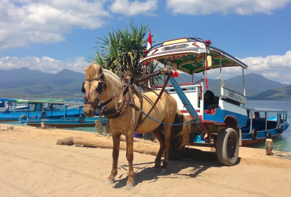 1. Gili Air Transport 1