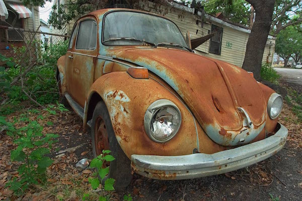 Rusty beetle. Picture courtesy asegeev.com