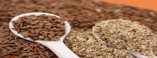 flax seeds weight loss