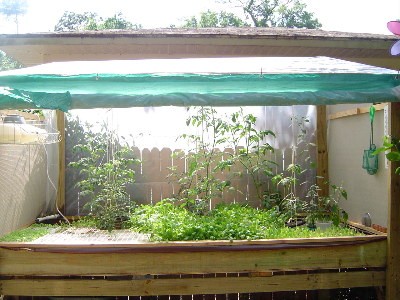 Hydroponics better health technologies for Hydroponic raft system design