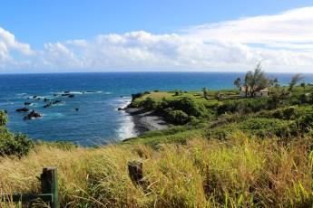 Plantation, Road to Hana, Maui, Hawaii