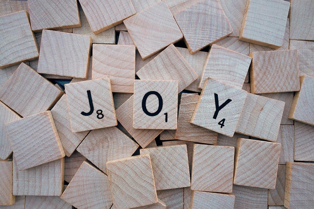 joy-1804593_1280