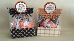 Small Of Halloween Treat Bags