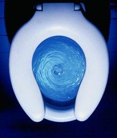 toilet_flush