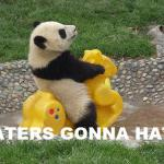 haters-gonna-hate-panda