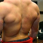 A back NOT built with rear delt raise variations!