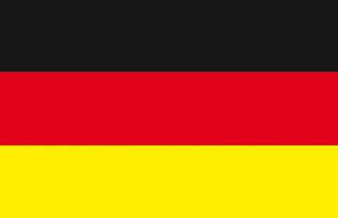 drapeauDT_biofeedback_neurofeedback_fribourg