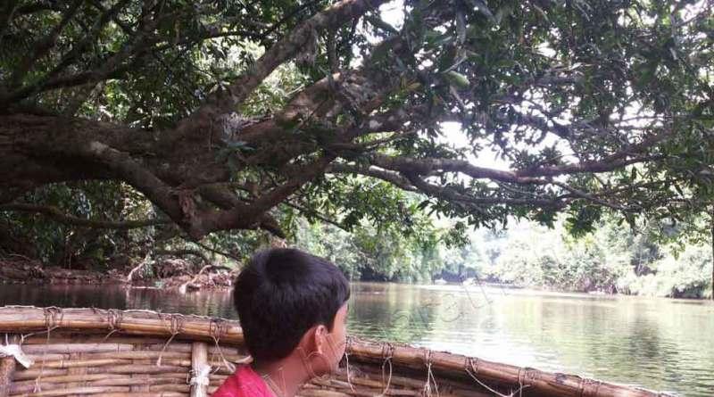 Adavi_kuttavanchi_bowl_boat (50)