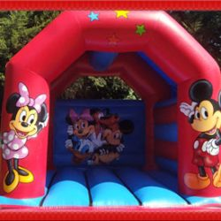 Brand new bouncing castle for hire