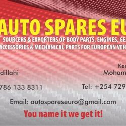 Auto Spares Euro business card