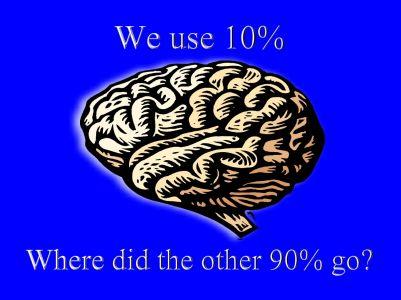 Brain20Picture401.jpg