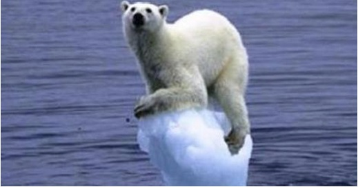 Obama Using Global Warming to Kill White Polar Bears Extinct