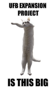 cat-extension