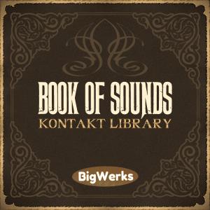 BigWerks-Book-Of-Sounds-Kontakt-Library