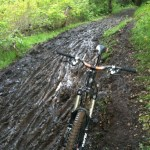 NorCal Trails Still Suffering